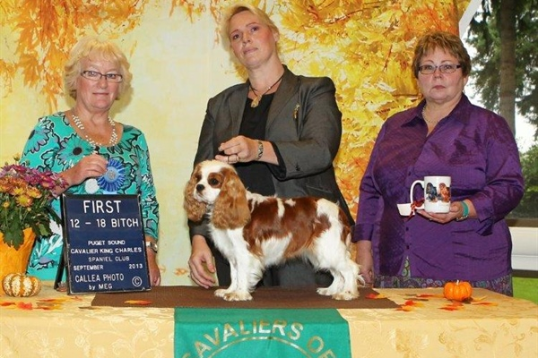 1st Place 12-18 Month Bitch, Legacy Sumpin To Talk About, Owners Dawn Stevens-Lindemaier, Kathleen C. Everaert.jpg