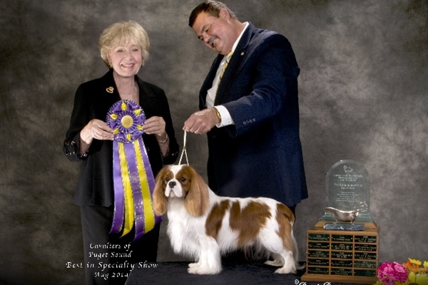 Best In Specialty Show-Kelly