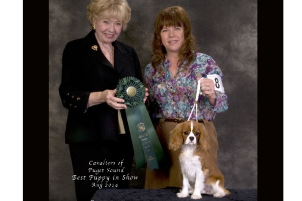 Best Puppy in Show-Rice-Waggoner-Mya