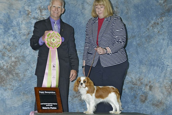 Best Puppy in Sweeps-Brenda Smith