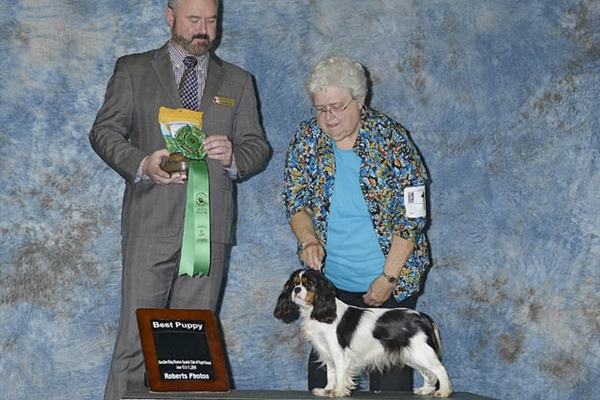 Best Puppy-Ruth Lerda & Jan Stanton